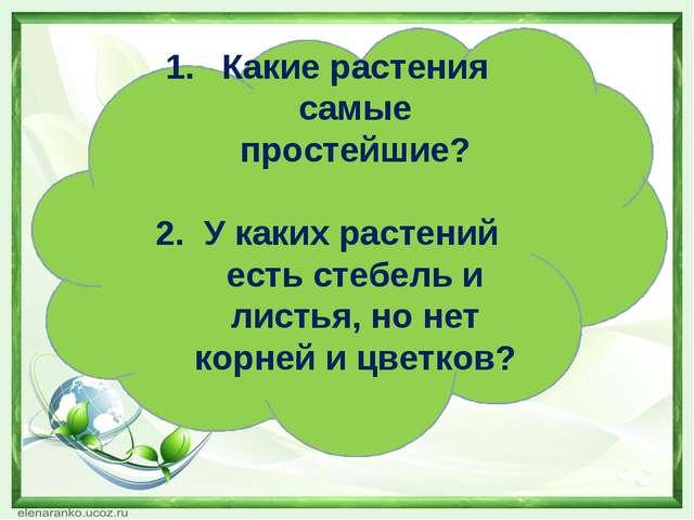 Какие растения самые простейшие? 2. У каких растений есть стебель и листья, н...