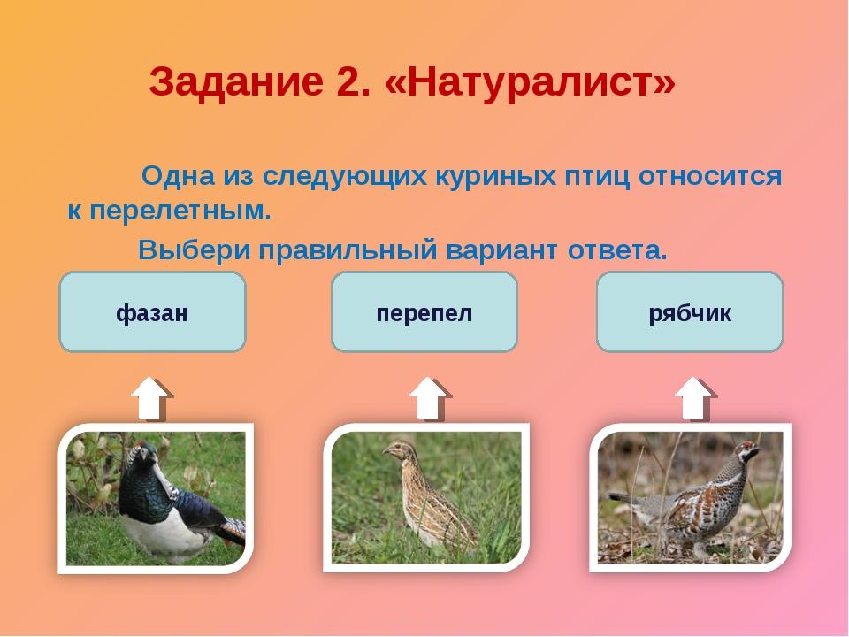 Задание 2. «Натуралист»  Одна из следующих куриных птиц относится к перелетн...