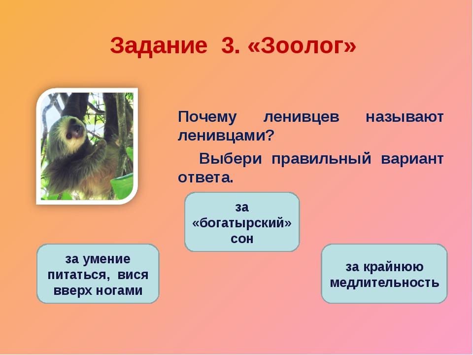 Задание 3. «Зоолог» Почему ленивцев называют ленивцами? Выбери правильный ва...