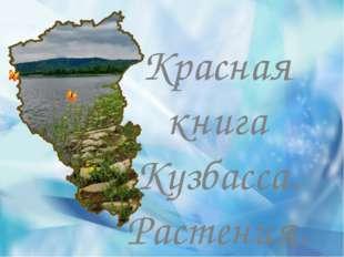 Красная книга Кузбасса. Растения.