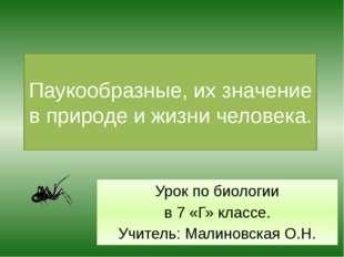 Паукообразные, их значение в природе и жизни человека. Урок по биологии в 7 «