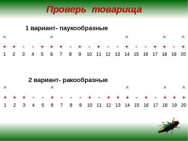 Проверь товарища 1 вариант- паукообразные 2 вариант- ракообразные ^ ^ ^ ^ ^ +...