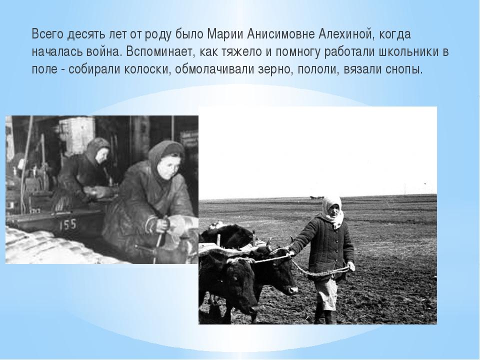 Всего десять лет от роду было Марии Анисимовне Алехиной, когда началась война...