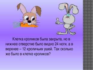 Клетка кроликов была закрыта, но в нижнее отверстие было видно 24 ноги, а в