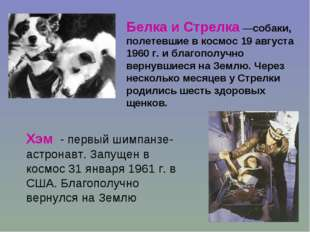 Белка и Стрелка —собаки, полетевшие в космос 19 августа 1960 г. и благополучн