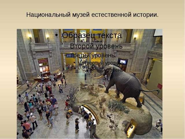 Национальный музей естественной истории.