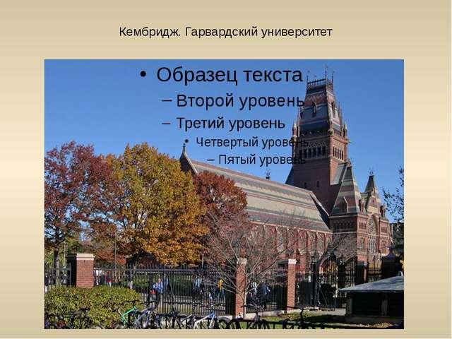 Кембридж. Гарвардский университет