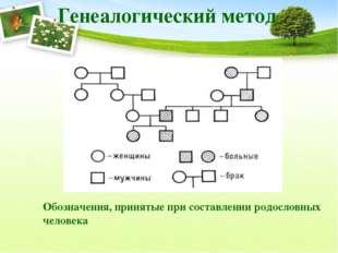 Генеалогический метод Обозначения, принятые при составлении родословных челов