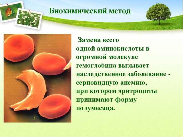 Биохимический метод Замена всего одной аминокислоты в огромной молекуле гемог...
