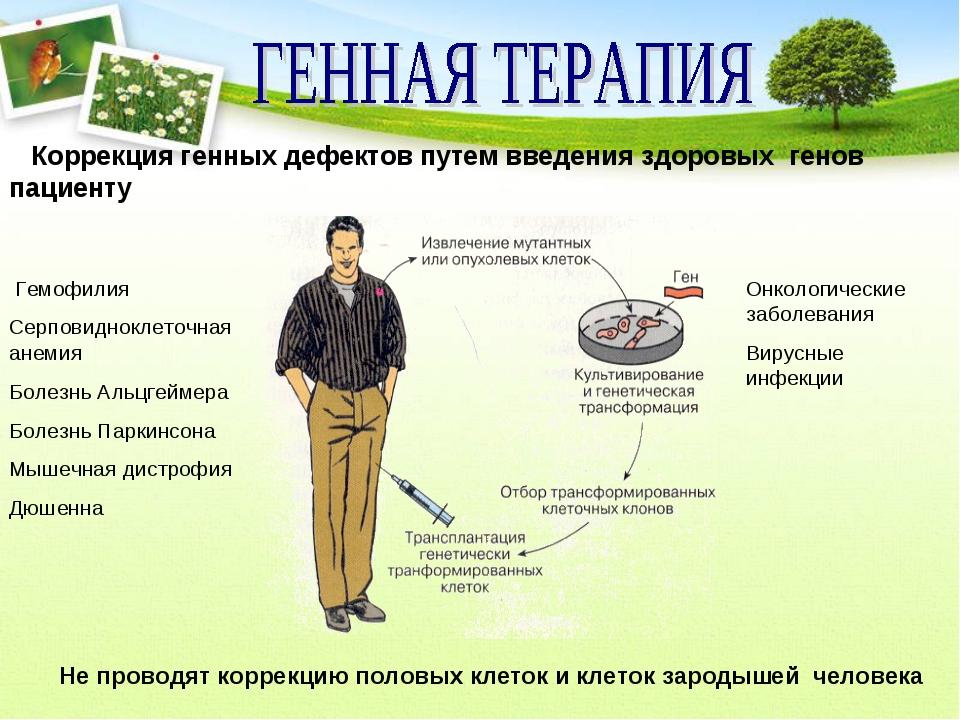 Коррекция генных дефектов путем введения здоровых генов пациенту Гемофилия С...