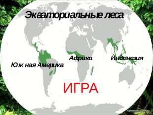 Южная Америка Африка Индонезия Экваториальные леса ИГРА