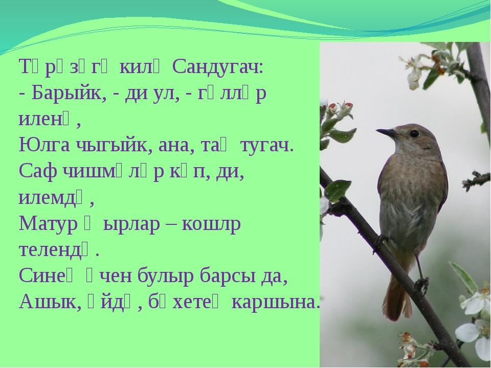 Тәрәзәгә килә Сандугач: - Барыйк, - ди ул, - гөлләр иленә, Юлга чыгыйк, ана,...