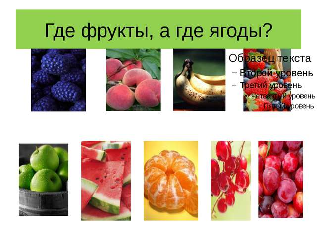 Где фрукты, а где ягоды?