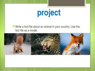 project Write a fact file about an animal in your country. Use the fact file