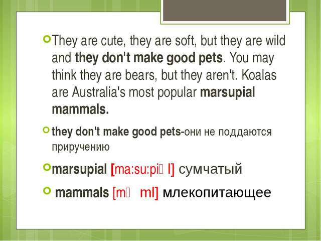 They are cute, they are soft, but they are wild and they don't make good pets...