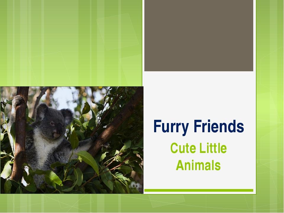 Furry Friends Cute Little Animals