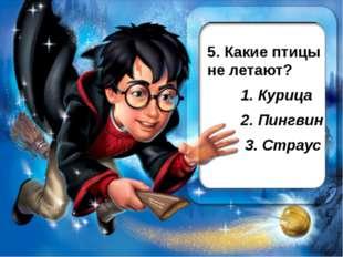 5. Какие птицы не летают? 1. Курица 2. Пингвин 3. Страус