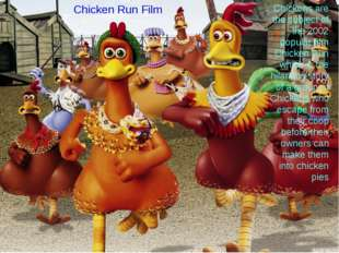 Chickens are the subject of the 2002 popular film Chicken Run which is the hi