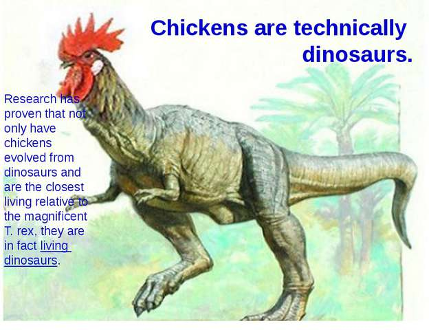 Chickens are technically  dinosaurs. Research has proven that not only have c...