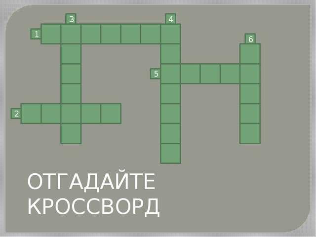 1 2 3 5 6 4 ОТГАДАЙТЕ КРОССВОРД