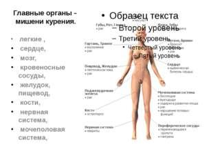 Главные органы – мишени курения. легкие , сердце, мозг, кровеносные сосуды, ж