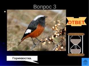 Вопрос 4 Эта очень подвижная птичка, даже отдыхая, ежеминутно помахивает свои