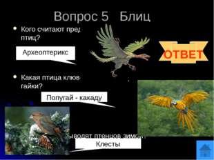 Вопрос 6 Какие птицы повисают на деревьях зимой кверху ногами, вниз спиной? З
