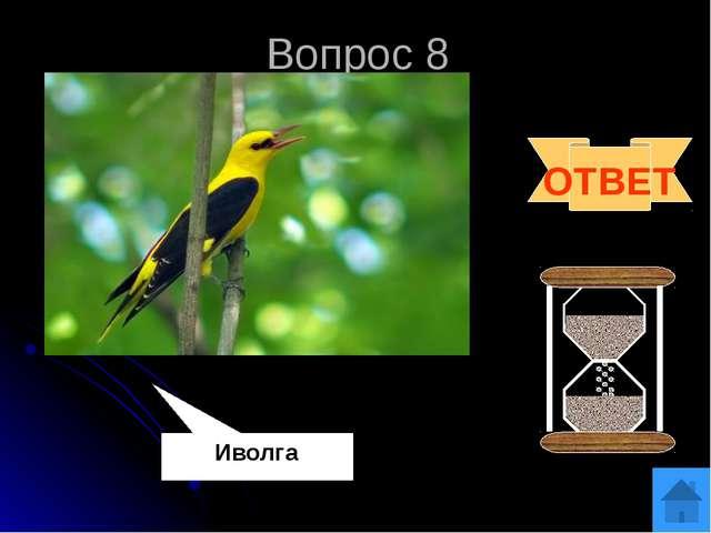 Вопрос 10 Суперблиц Какая птица своей песней раньше других предвещает приход...