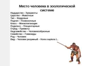 Надцарство - Эукариоты Царство – Животные Тип – Хордовые Подтип – Позвоночные