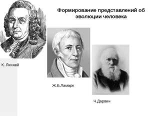 К. Линней Ж.Б.Ламарк Ч.Дарвин Формирование представлений об эволюции человека