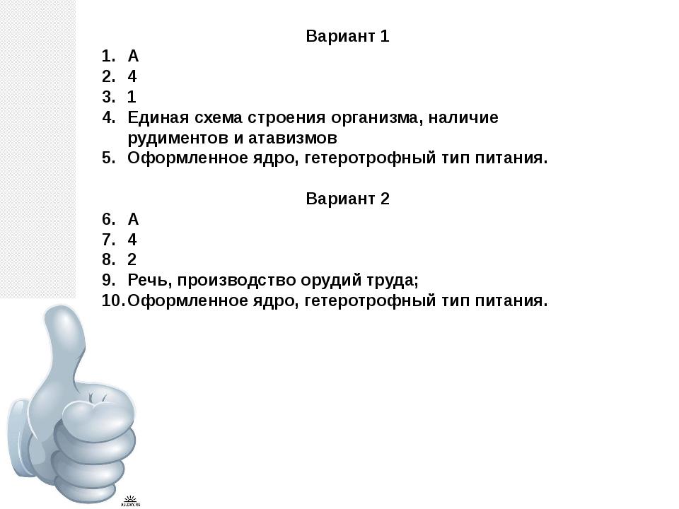 Вариант 1 А 4 1 Единая схема строения организма, наличие рудиментов и атавизм...
