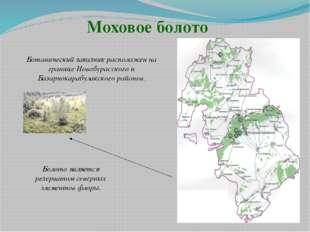 Моховое болото Ботанический заказник расположен на границе Новобурасского и