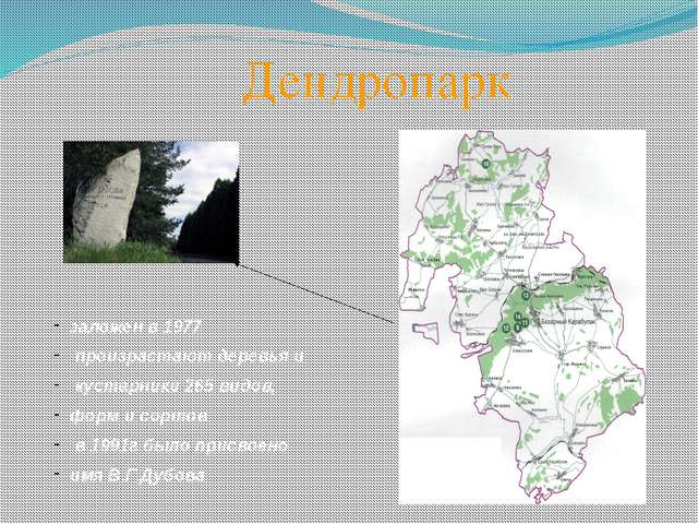 Дендропарк заложен в 1977 произрастают деревья и кустарники 265 видов, форм...