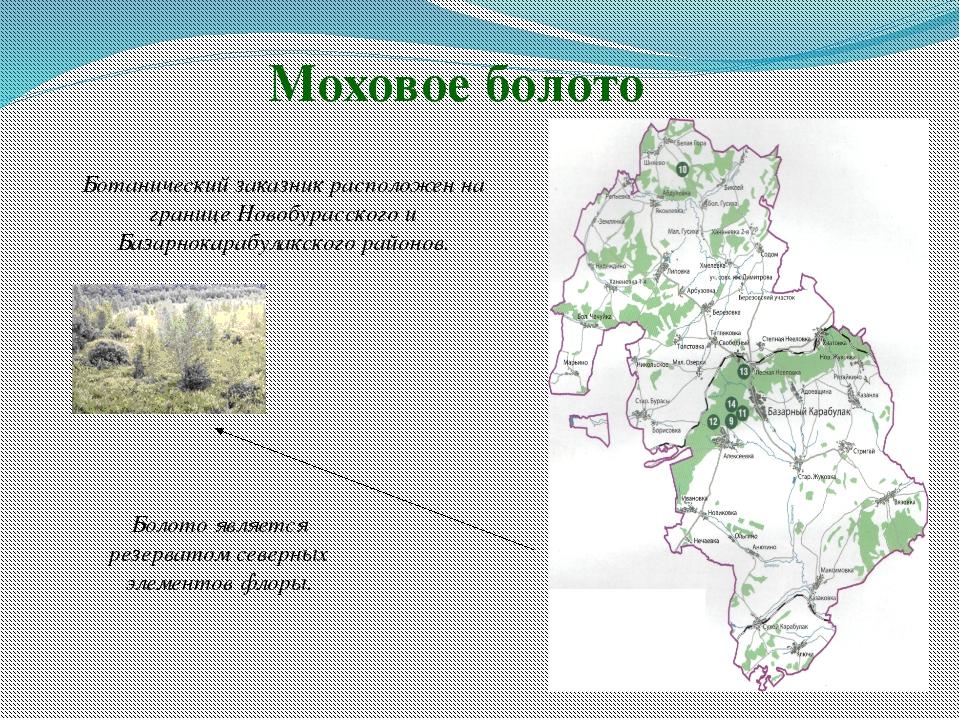 Моховое болото Ботанический заказник расположен на границе Новобурасского и...