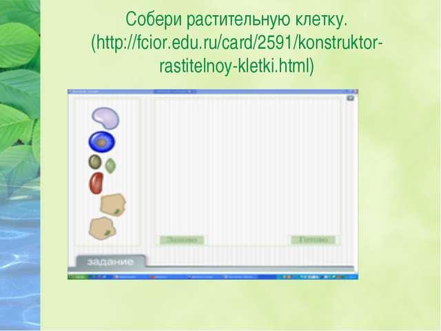 Собери растительную клетку. (http://fcior.edu.ru/card/2591/konstruktor-rastit...