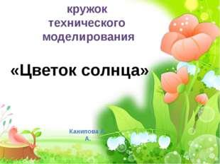 кружок технического моделирования «Цветок солнца» Канипова А. А.