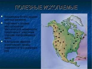 ПОЛЕЗНЫЕ ИСКОПАЕМЫЕ Кордильеры богаты рудами цветных металлов. Нефтяные и газ