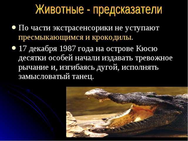 По части экстрасенсорики не уступают пресмыкающимся и крокодилы. 17 декабря 1...