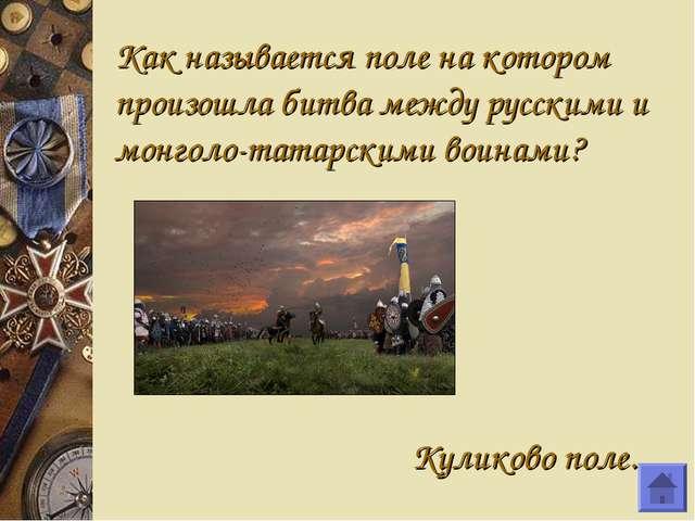 Как называется поле на котором произошла битва между русскими и монголо-татар...