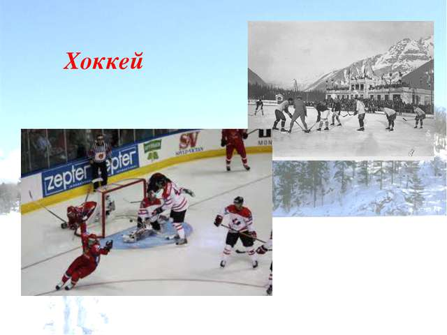 Санный спорт Скелетон Сноуборд Фристайл Шорт-трек Керлинг Лыжное двоеборье Го...