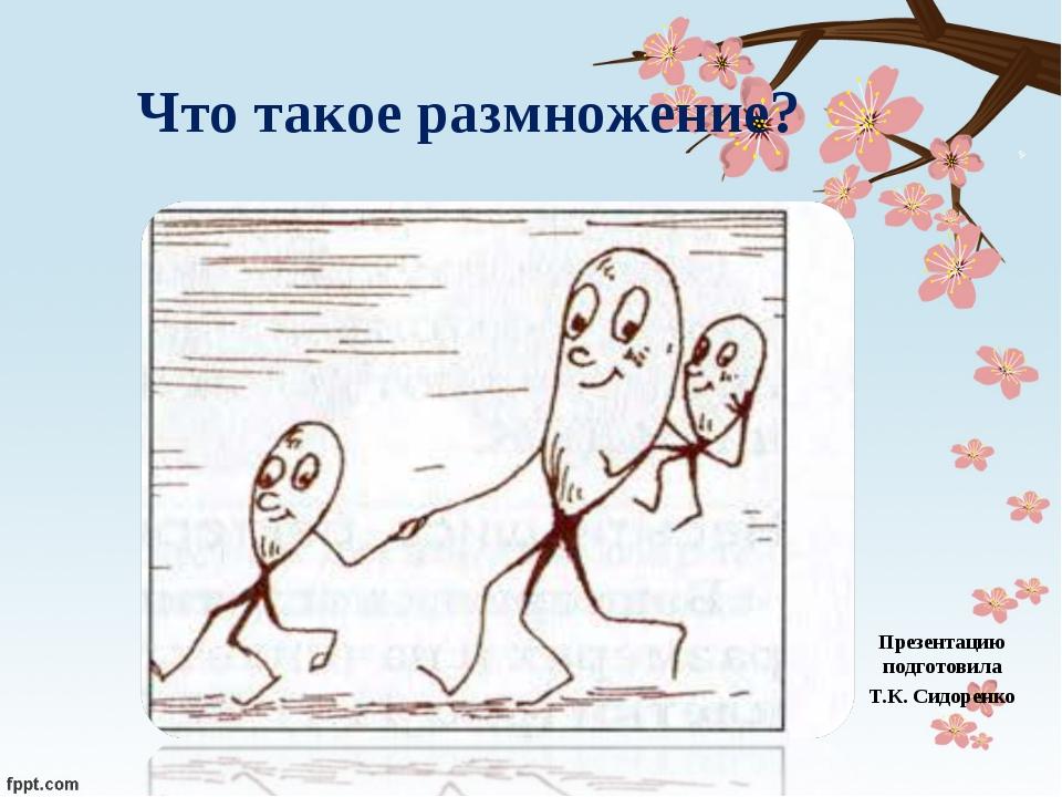 Что такое размножение? Презентацию подготовила Т.К. Сидоренко