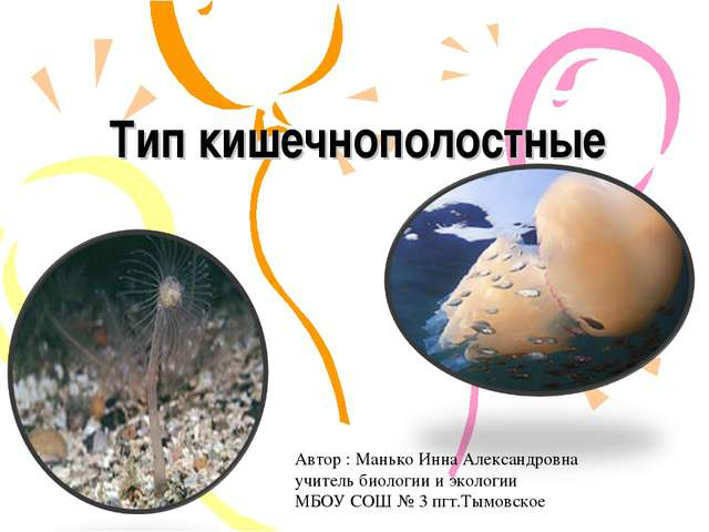 Тип кишечнополостные Автор : Манько Инна Александровна учитель биологии и эко...
