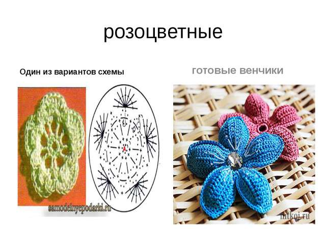 розоцветные Один из вариантов схемы готовые венчики