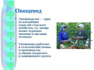 Овощевод Овощеводство— одна из важнейших отраслей сельского хозяйства, т.к.