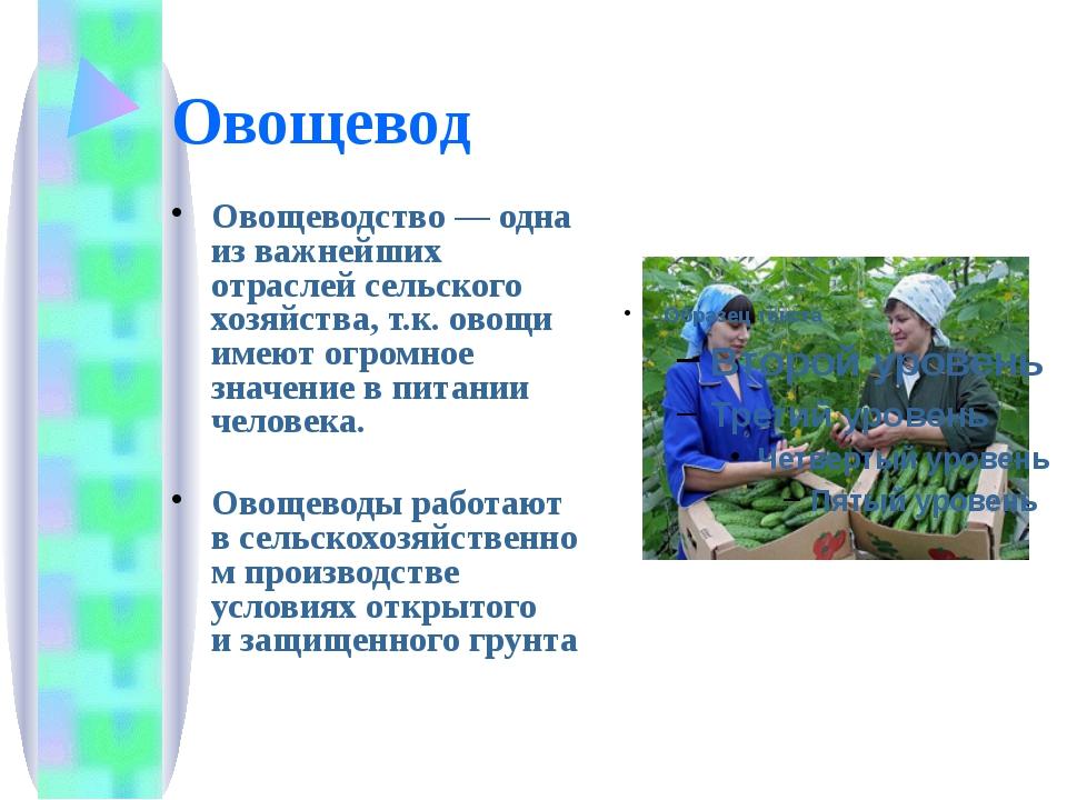 Овощевод Овощеводство— одна из важнейших отраслей сельского хозяйства, т.к....