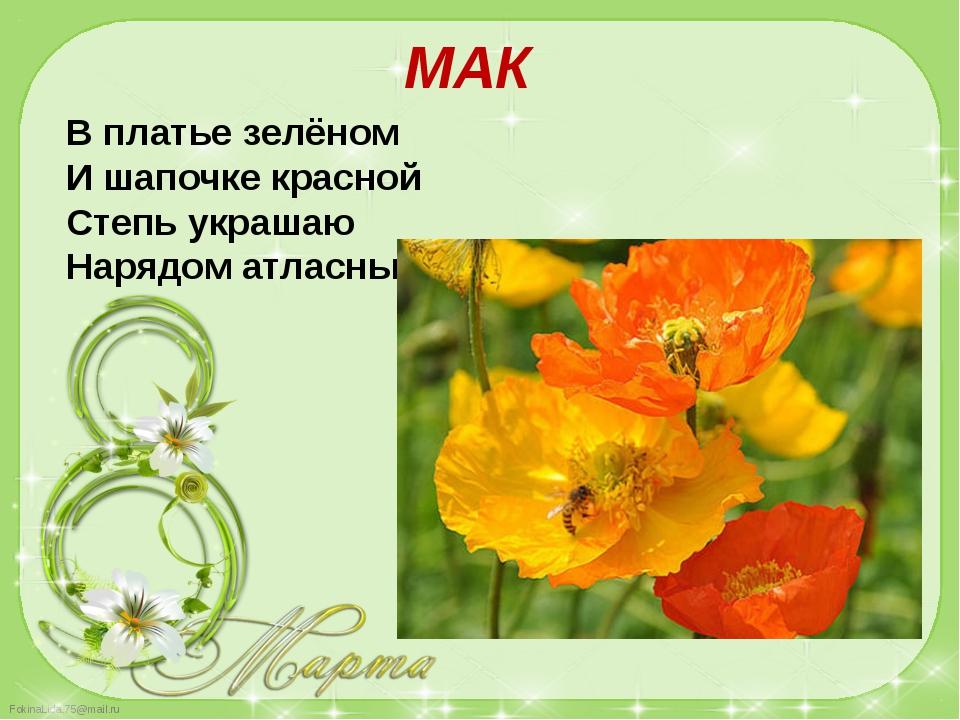 В платье зелёном И шапочке красной Степь украшаю Нарядом атласным. МАК Fokina...