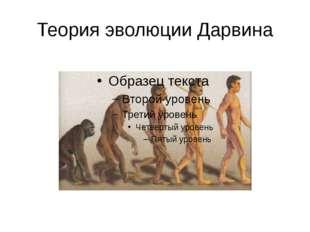 Теория эволюции Дарвина