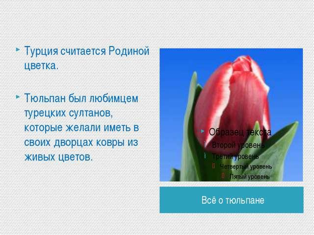 Всё о тюльпане Турция считается Родиной цветка. Тюльпан был любимцем турецких...