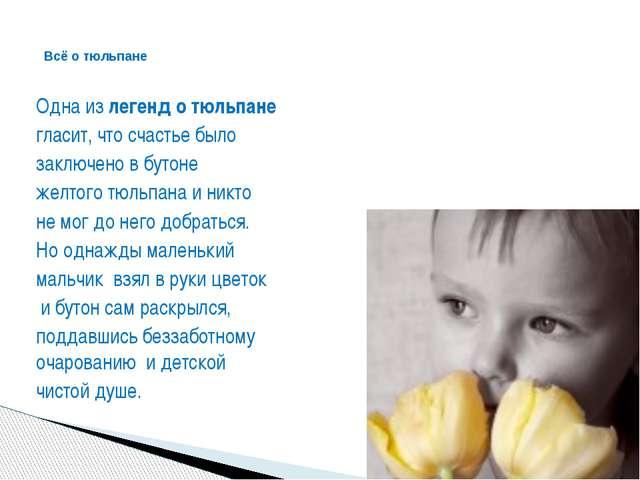 Одна излегенд о тюльпане гласит, что счастье было заключено в бутоне желтог...