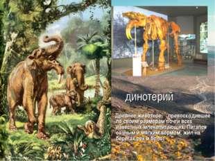 динотерий Древнее животное, превосходившее по своим размерам почти всех извес